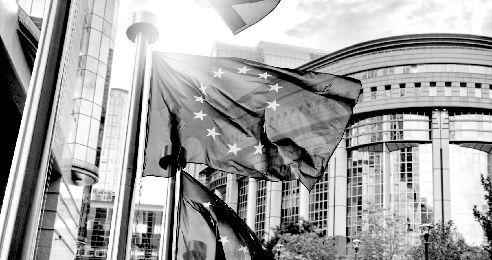 EU skal på slankekur